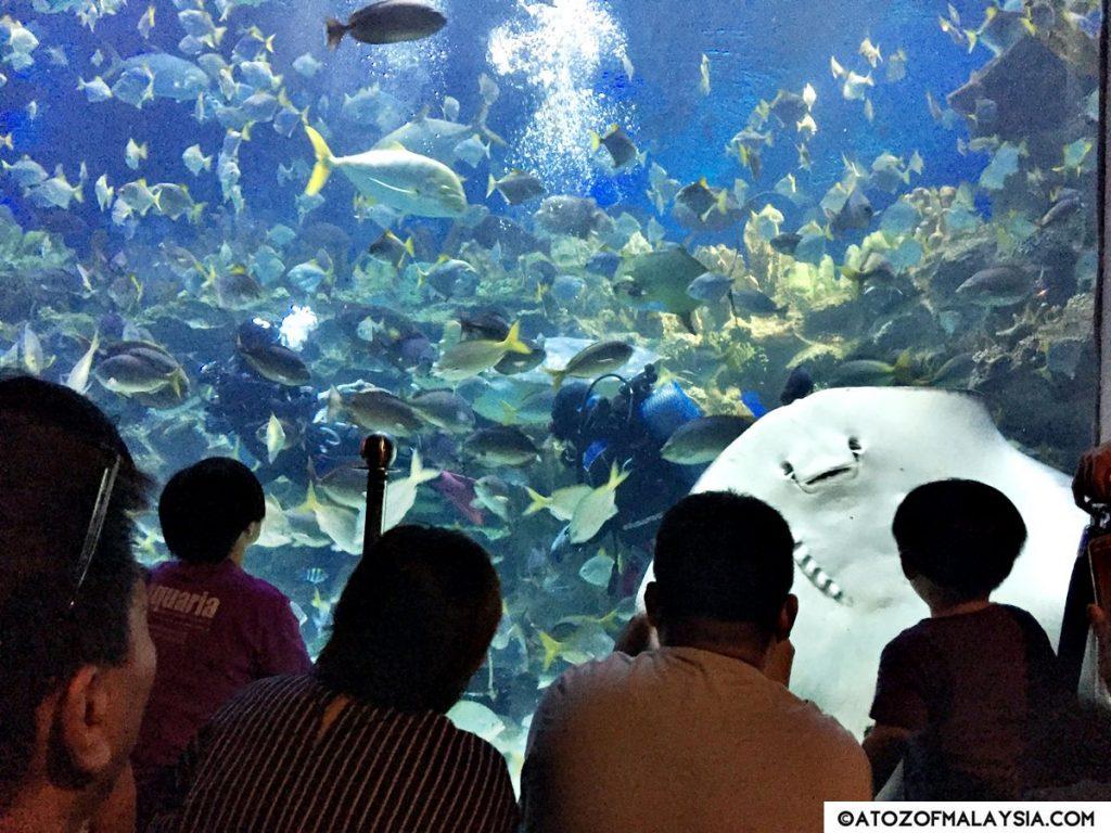 Aquatheatre Aquaria KLCC 02