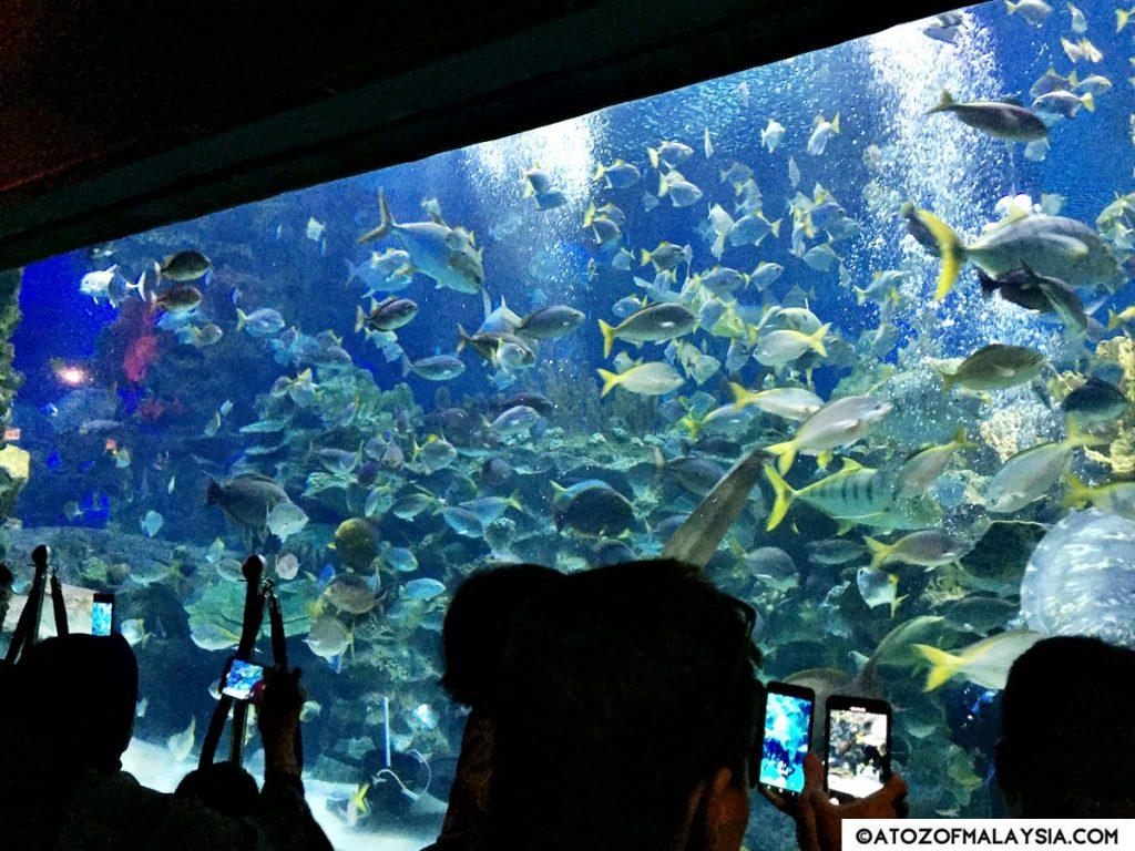 Aquatheatre Aquaria KLCC 09