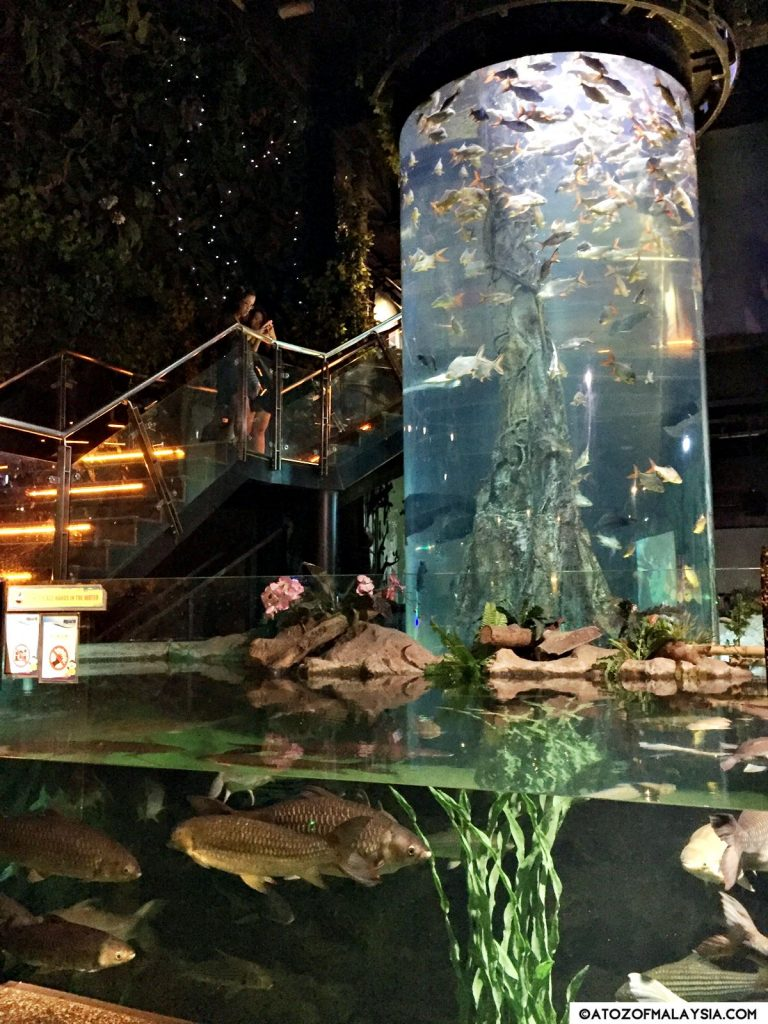 Freshwater Journey Aquaria KLCC magnificient tank
