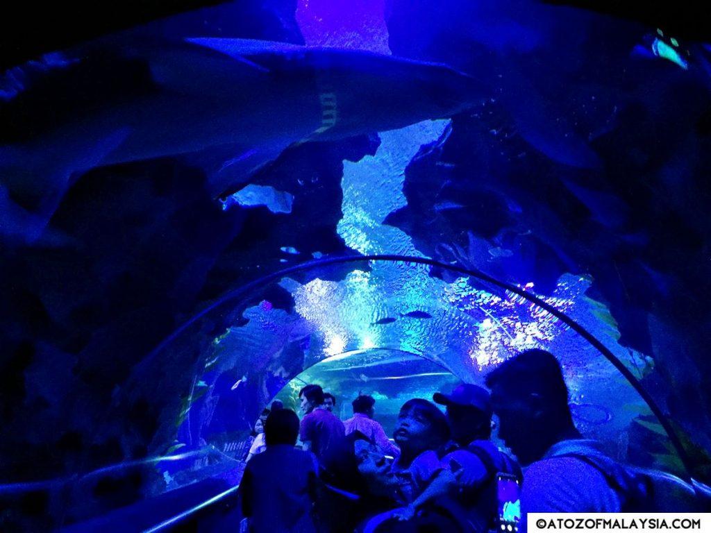 Oceanarium Aquaria KLCC 02