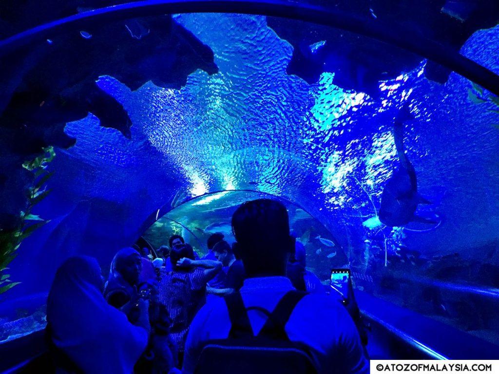 Oceanarium Aquaria KLCC 03