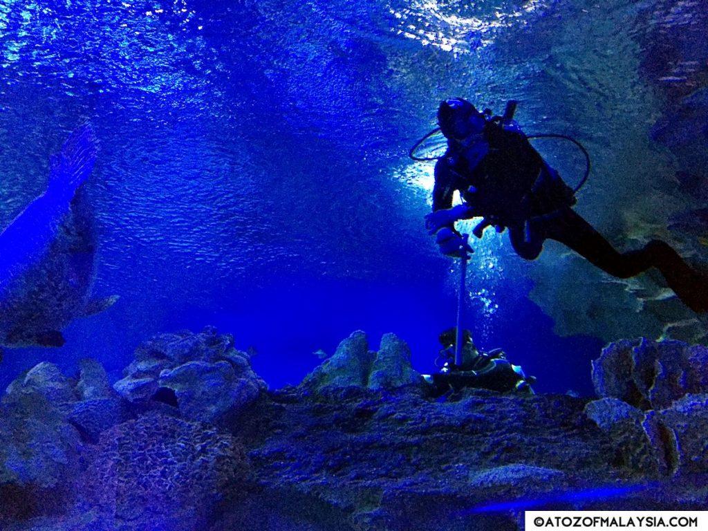 Oceanarium Aquaria KLCC 05