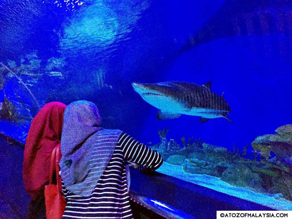Oceanarium Aquaria KLCC 07