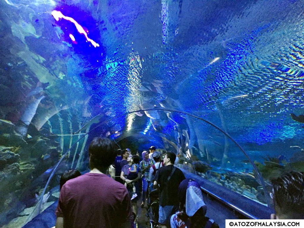 Oceanarium Aquaria KLCC 09