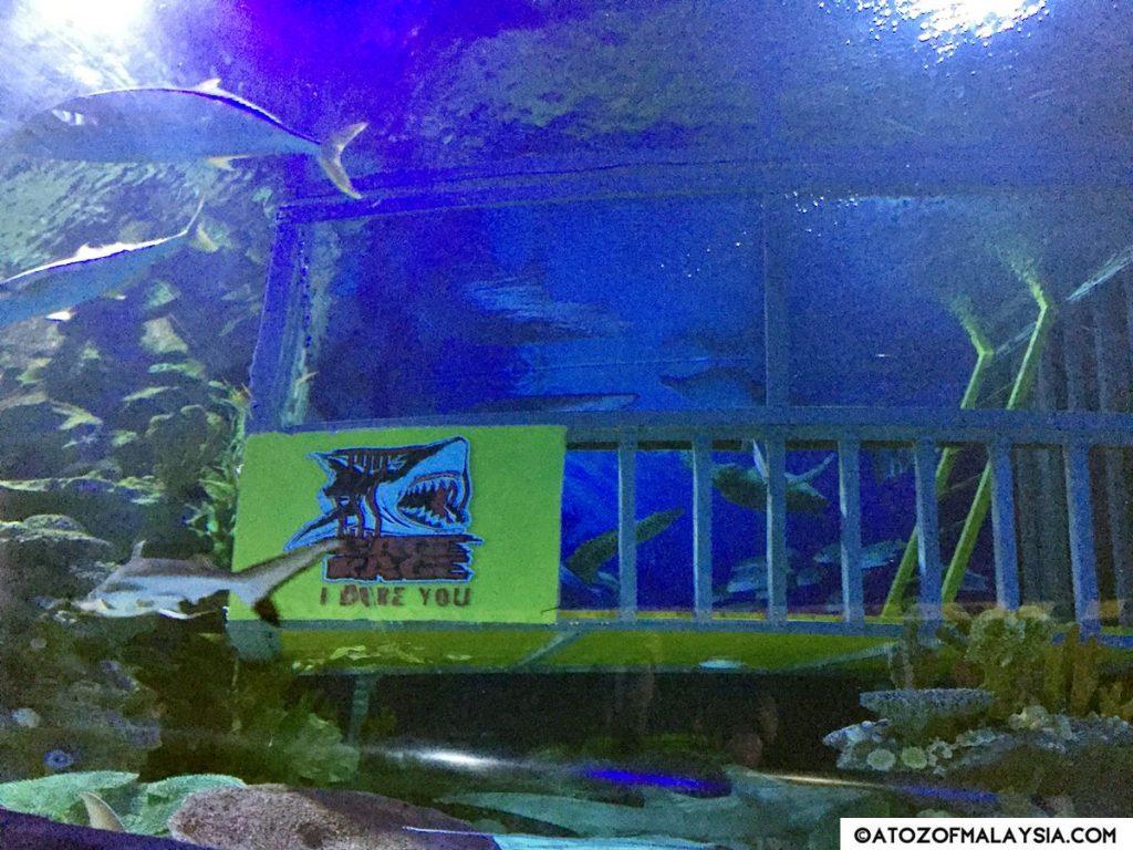 Oceanarium Aquaria KLCC 15