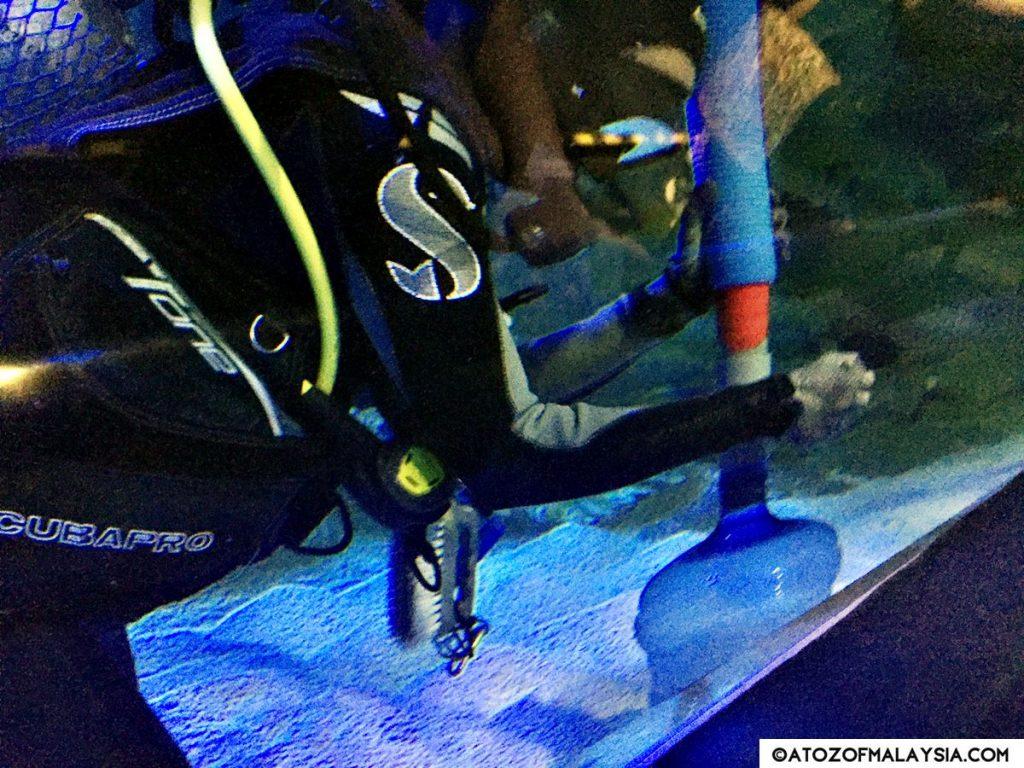 Oceanarium Aquaria KLCC 23