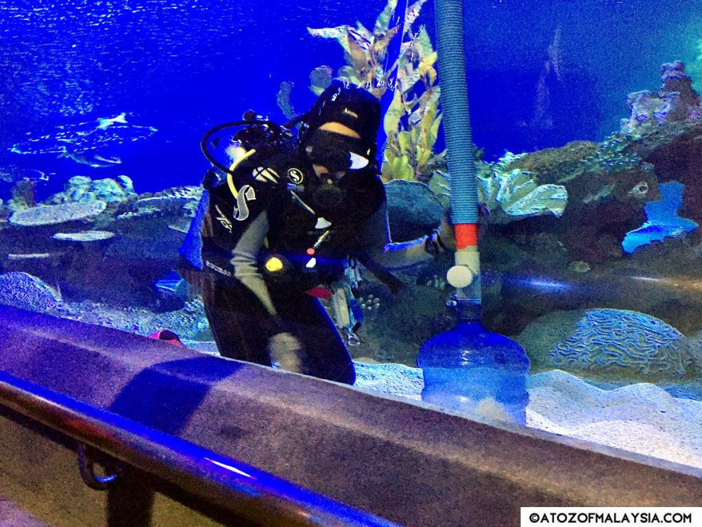 Oceanarium Aquaria KLCC 24