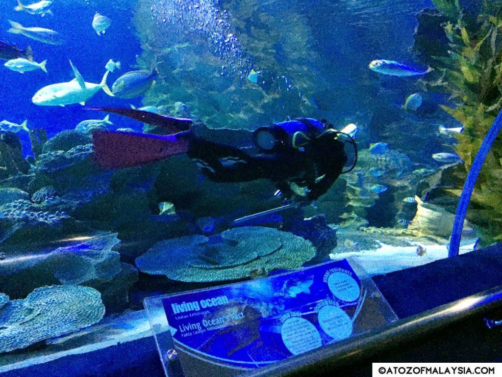 Oceanarium Aquaria KLCC 26