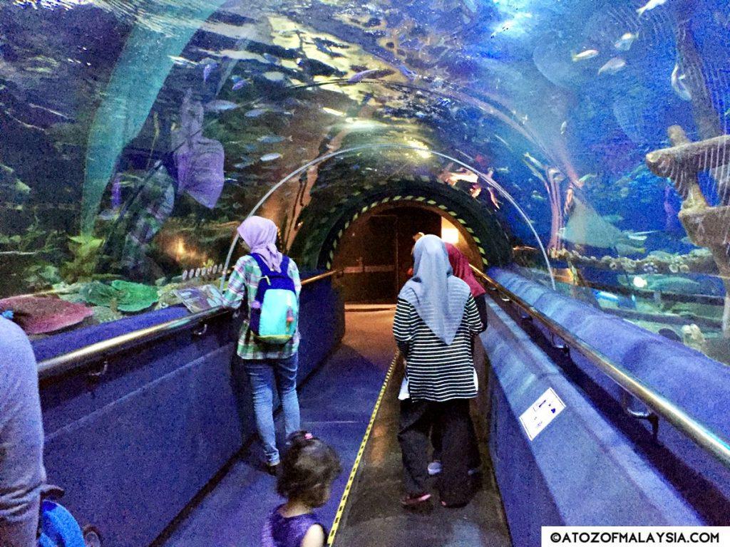 Oceanarium Aquaria KLCC 27
