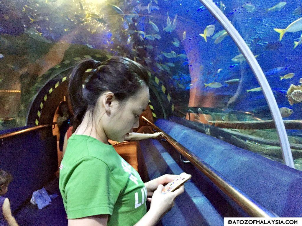 Oceanarium Aquaria KLCC 28