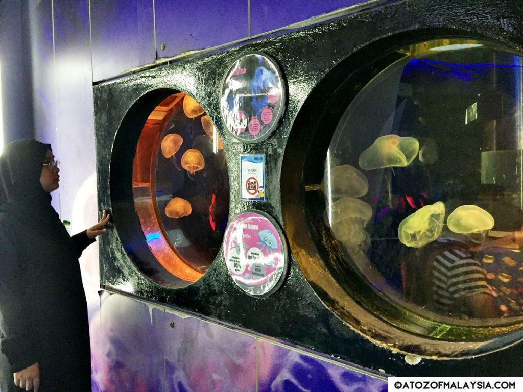 Weird and Wonderful Aquaria KLCC jellyfish